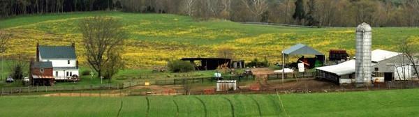 Farmhouse-Barns-Fields_600